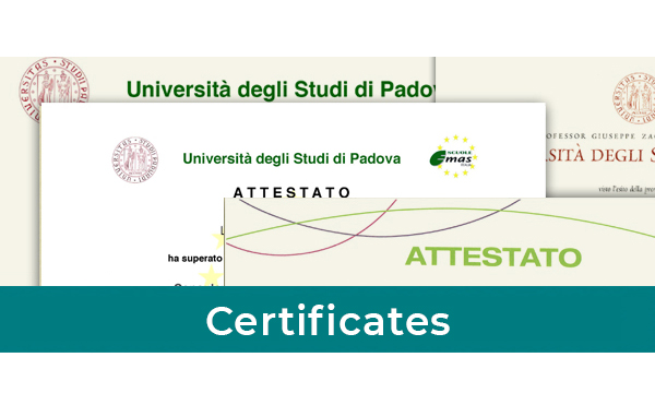 Certificates Master in Strategy Environmental Management